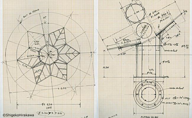 Z-helioflore dessins-650